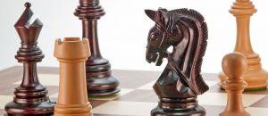 6. Internationales Schachfestival Città di Cattolica