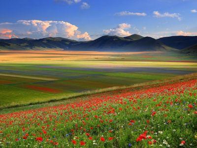 Springtime in Umbria