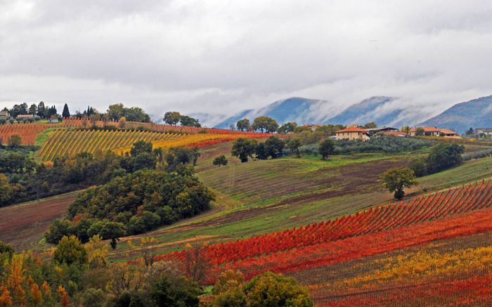 Autumn in Umbria