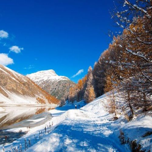 Advanced booking for Livigno