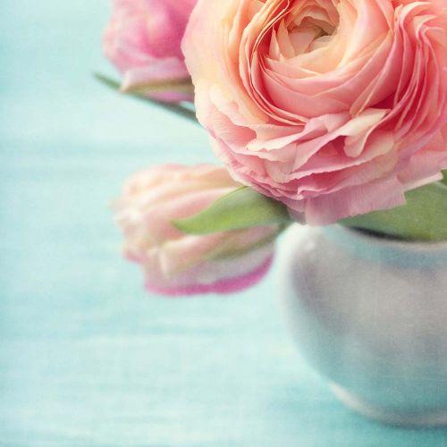 Flower's scent