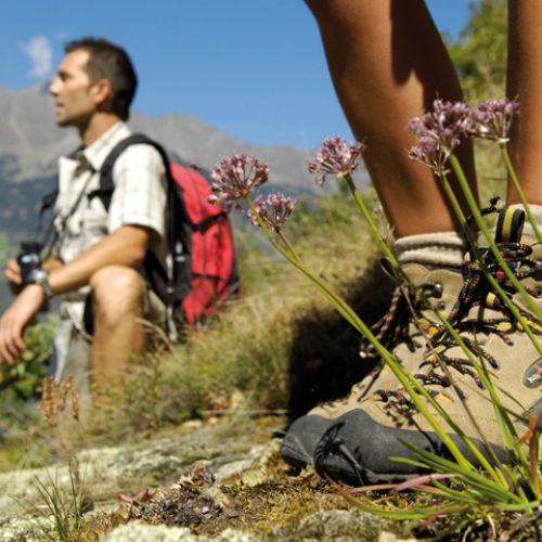 Indimenticabili Escursioni con la nostra guida Alpina!