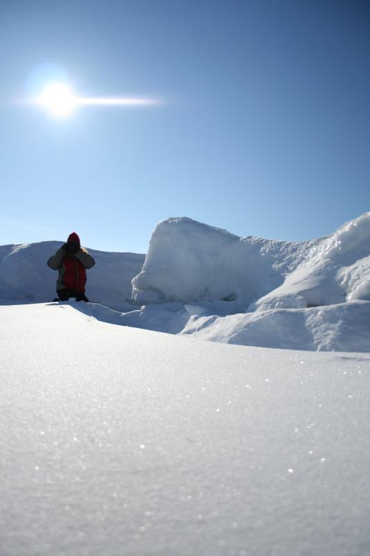 Dolomiti Ski S.MART