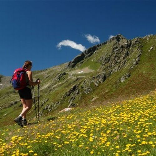 Evento speciale: Escursioni gratuite con la guida Alpina!
