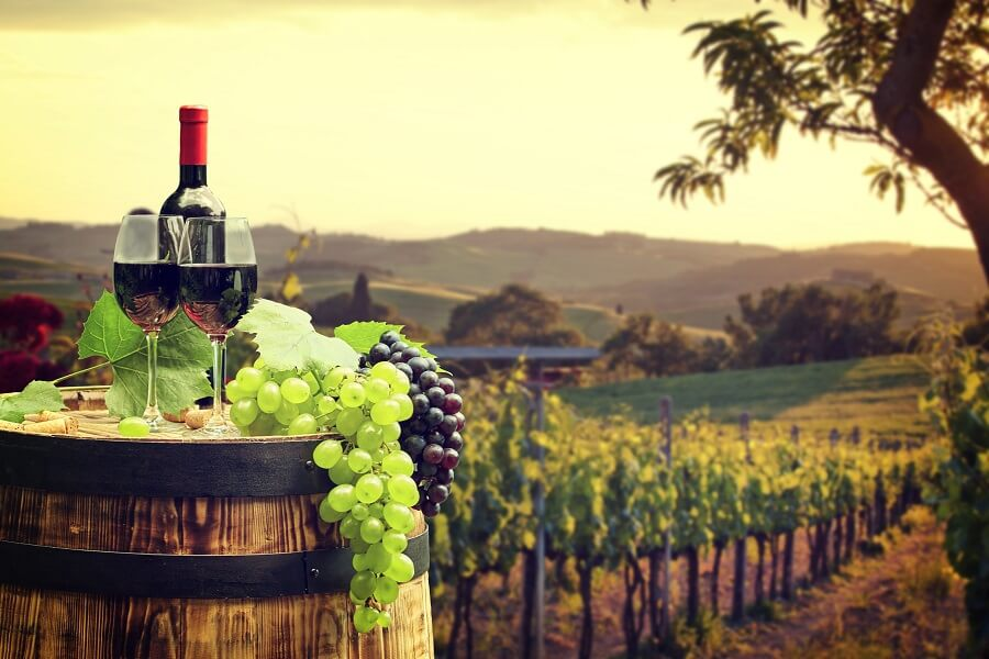 Gourmet holidays with wine tasting
