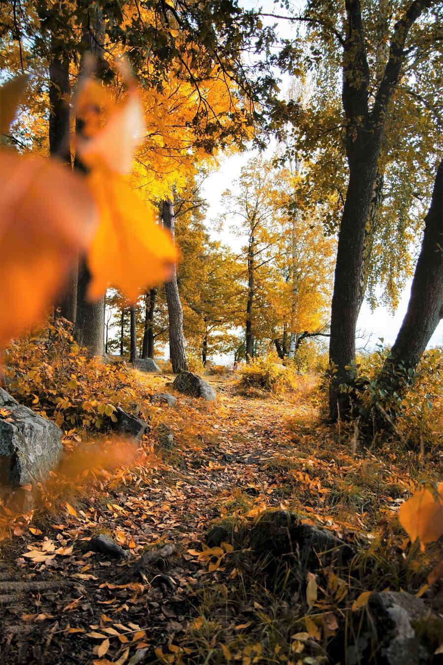 Offerte d'autunno in Valle d'Aosta