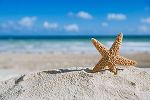 Offerte giugno vacanze Lido di Savio