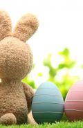 Pasqua & Ponti Primaverili