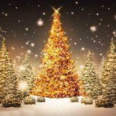 Magia del Natale in famiglia