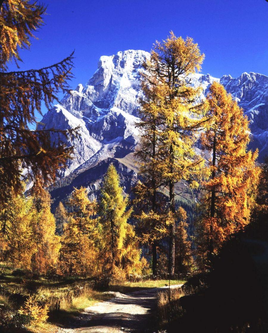 Autunno dorato sulle Dolomiti
