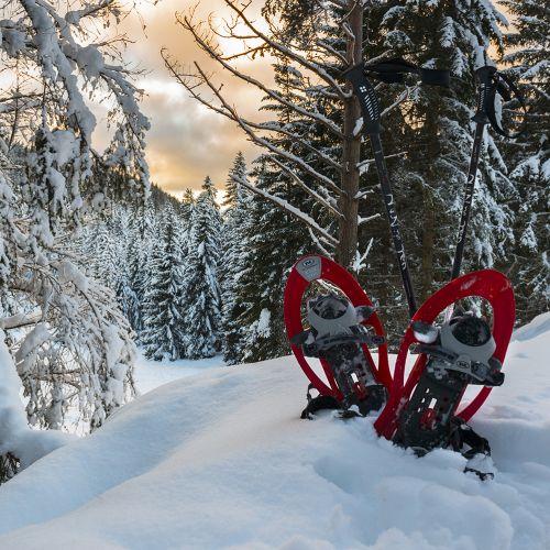 Per chi non scia....Settimana delle ciaspole a San Martino di Castrozza nelle Dolomiti