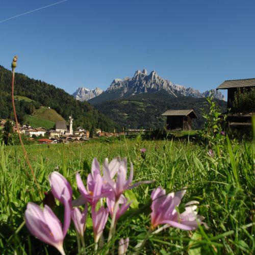 Sommerangebote  in den Bergen