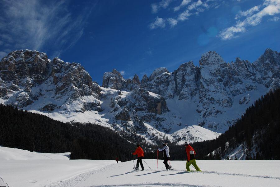 Offers ski in 2022 in Trentino