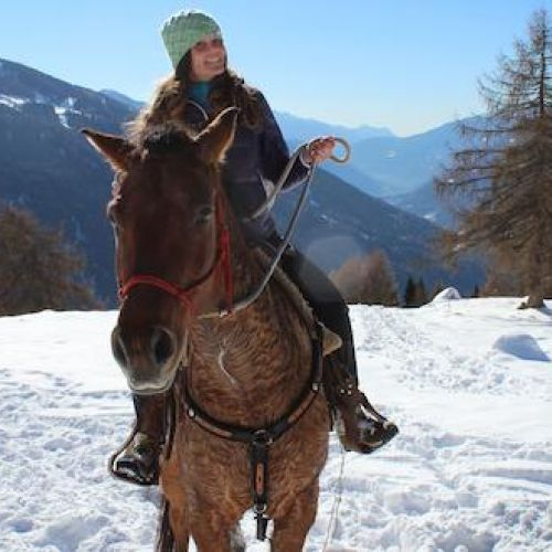 Horse riding on the snow
