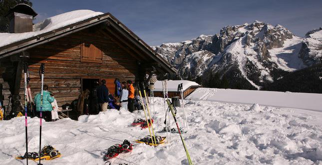 Snowshoeing and excursions on the snow