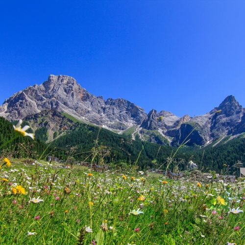 Offerte Ferragosto estate 2019 in montagna