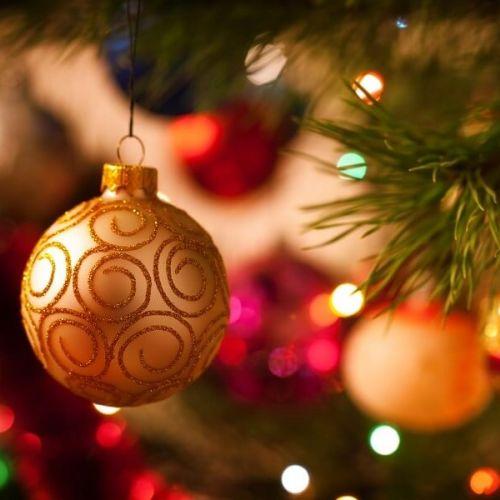 Offerta Natale in Val di Fiemme
