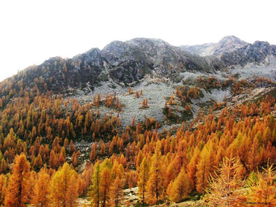Tour du mont Pin dans Maddalene