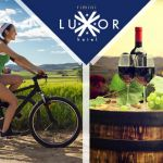Wine E-Bike Tour