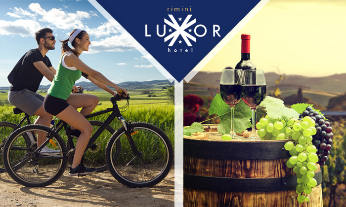 Wine E-Bike Tour