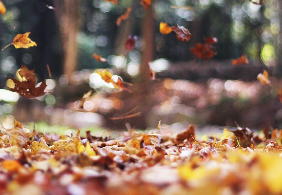 Offerte autunno in Valle d'Aosta