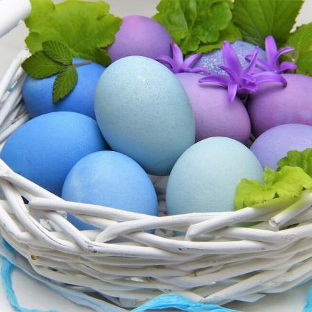 Offerte Pasqua BB a Riccione